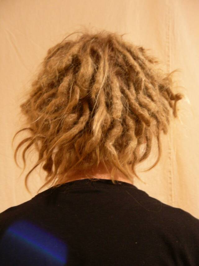 short dreadlocks before maintenance