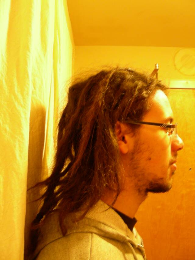 dreads 3 months after starting